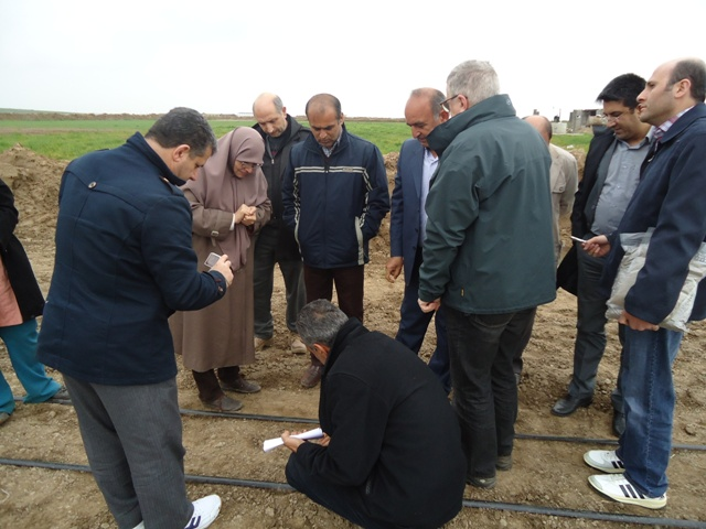 DSC09413 حضور پژوهشگران حاضر در کارگاه آموزشی کشت سالیکورنیا در ایستگاه تحقیقات شوری گلستان