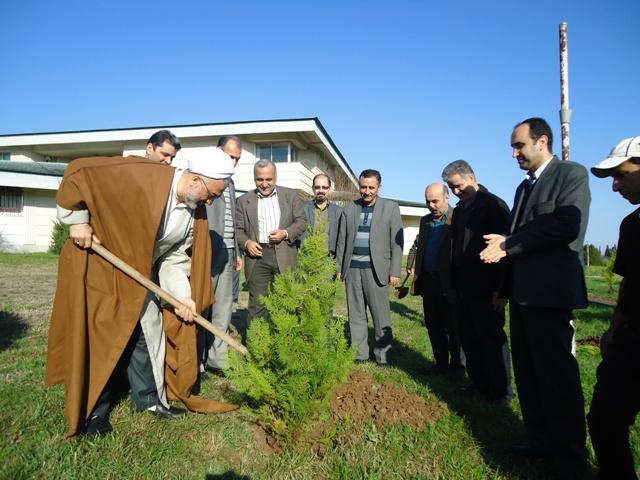 DSC09588 نمایش جشن درختکاری در مرکز تحقیقات و همچنین آموزش کشاورزی و همچنین منابع طبیعی گلستان