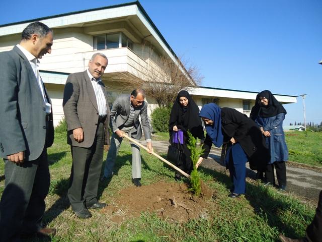 DSC09595 نمایش جشن درختکاری در مرکز تحقیقات و همچنین آموزش کشاورزی و همچنین منابع طبیعی گلستان