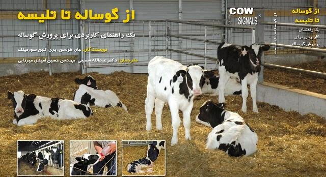 jeld-calf-book