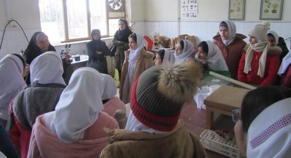 N9810231B بازدید دانش آموزان دبستان نیایش از مرکز تحقیقات و همچنين آموزش گلستان