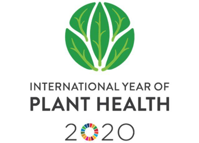 N9812212B اعلام سال شمسي ۲۰۲۰ را به عنوان سال شمسي جهانی بهداشت گیاهان (IYPH)
