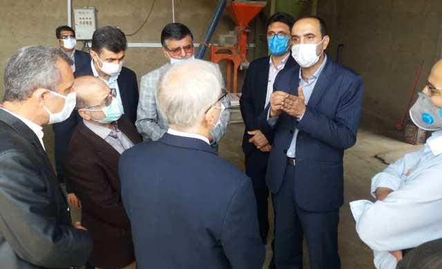 N9905141D سفر دکتر بازرگان دست يار وزیر جهاد کشاورزی به استان گلستان