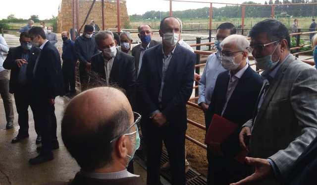 N9905141F سفر دکتر بازرگان دست يار وزیر جهاد کشاورزی به استان گلستان
