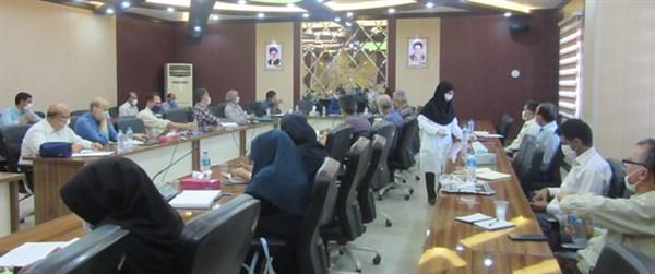 N9905211B برگزاری جلسه طرح یاوران تولیداستان درمرکز تحقیقات و همچنين آموزش گلستان