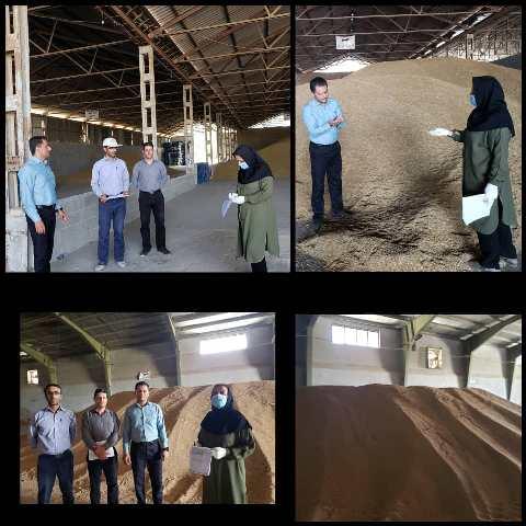 N9906031B کنترل فرایند تولید بذرو همچنينبازدید مزارع به همت کارشناسان واحد ثبت و همچنين گواهی مرکز تحقیقات و همچنين آموزش گلستان