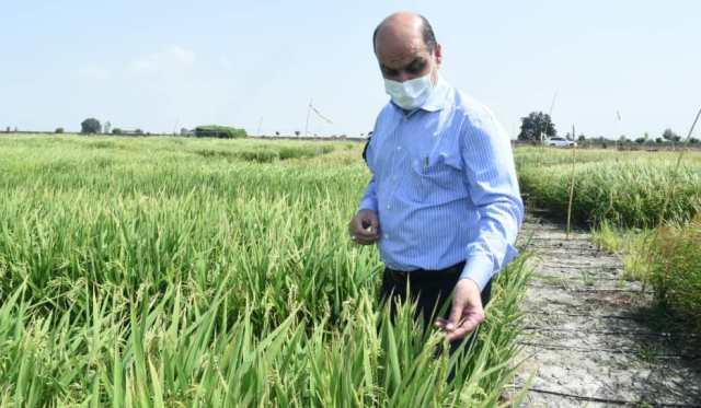 N9906221D بازدید استاندار گلستان از طرح های تحقیقاتی مرکز تحقیقات و همچنين آموزش کشاورزی و همچنين منابع طبیعی